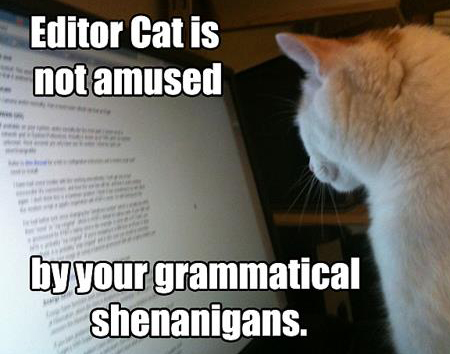 Indie authors! Is your editor wasting your money?